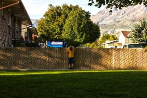 Mason at the fence
